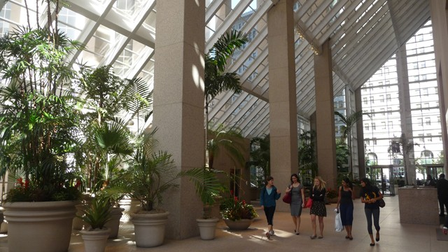 Greenhouse at Citigroup Center