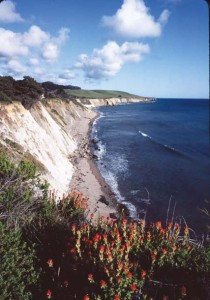 Dramatic seaside cliffs just south of the town of Point Arena. Photo by Frank S. Balthis