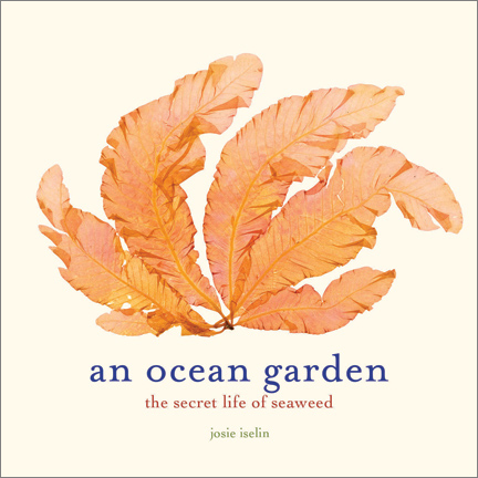 An Ocean Garden: The Secret Life of Seaweed