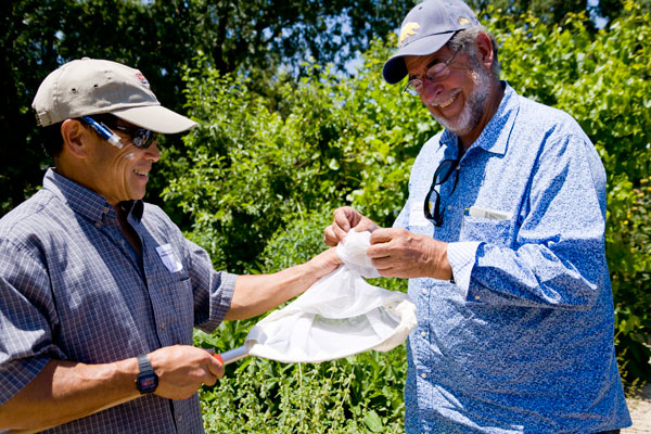 Dr. Gordon Frankie and a volunteer collect their findings at the Sonoma Bee Count, a local citizen science