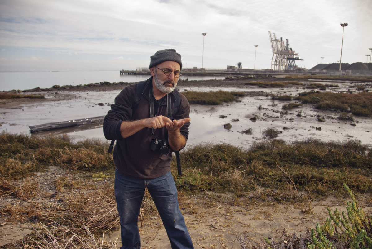 Coastal ecologist Peter Baye inspects the seeds of an endangered sea blite. (Photo by Eric Simons)